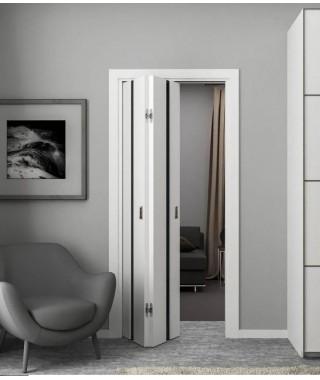 Система «Дверь-Книжка»